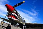 Airshow-plane-1352922523ESt.jpg