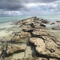 Aitutaki by Nick Longrich.jpg