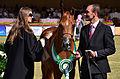Al Khaledia Arabian Horse Festival (6781678785).jpg