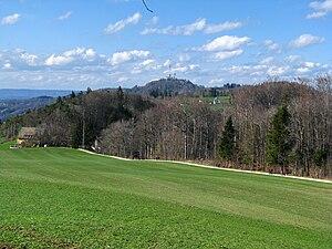Albis - Hiking trail from Felsenegg to Uetliberg as seen near Balderen.