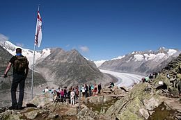 Aletsch Bettmerhorn.jpg
