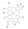 AllBacteriochlorophylls.png