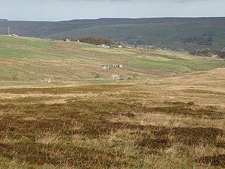 Allendale Moors