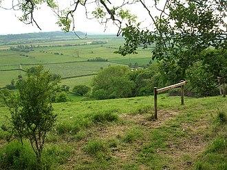 Aller Hill - Image: Allerridge