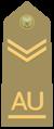 Allievo ufficiale scelto of the Italian Army.png