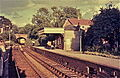 Alresford station in 1970.jpg