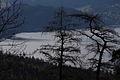 Altausseer See v stummernalm 78966 2014-11-15.JPG
