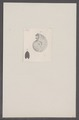 Ammonites spec. - - Print - Iconographia Zoologica - Special Collections University of Amsterdam - UBAINV0274 091 01 0008.tif