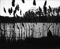 Among (explored) - Flickr - Νick Perrone.jpg