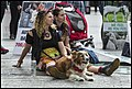 Animal lovers in King George Square-1 (35097809651).jpg