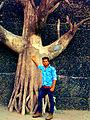 Ankur Anand Singhkm (42).jpg