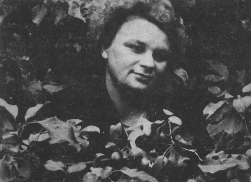 Anna Kamieńska - życie, twórczość, biografia