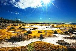 Antelope Valley Morning (5574963040).jpg