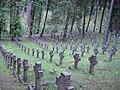 Antokol groby polskie.JPG