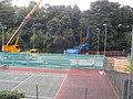 Anyone for tennis^ - geograph.org.uk - 561143.jpg