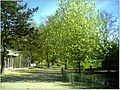 April Parc Natural Freiburg Germany - Master Landscape Rhine Valley Photography 2014 Landgut Mundenhof - panoramio (28).jpg