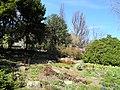 Arboretum Zürich 2012-03-26 13-43-23 (P7000).JPG