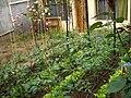Aretxabaleta-apts-and-garden-4618.jpg
