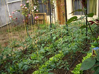 Urban agriculture - A tidy front yard flower and vegetable garden in Aretxabaleta, Spain