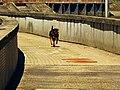 Around The Corner - panoramio.jpg