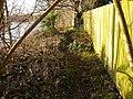 Attenborough Nature Reserve Path - geograph.org.uk - 1126892.jpg