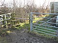 Attenborough Nature Reserve Path and stile - geograph.org.uk - 1126801.jpg