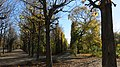 Augarten-Park 67.jpg
