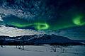 Aurora Borealis Tromsø Norway.jpg