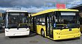 Autobusy BMC, Transexpo 2007.jpg