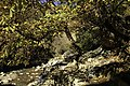 Autumn in Ourika Valley (11278008675).jpg
