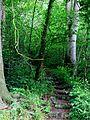 Avenham Park, Preston-15093034671.jpg