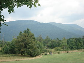 BackAlleghenyMountain.jpg