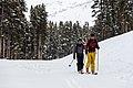 Backcountry skiers near Canyon Village in spring (9ac6eefc-87b3-4787-ab05-000ae9e81924).jpg