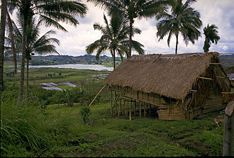 Tboli people - A Tboli nipa hut.