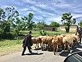 Balakot Road Pakistan.jpg