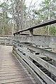 Bald Cypress Trail First Landing State Park-boardwalk-decking-railing (32364294054).jpg