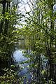 Bamberg Bughof Ludwig-Donau-Main-Kanal D-4-61-000-1520 001.JPG