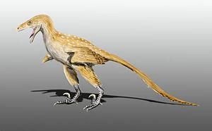 Bambiraptor - Artist's restoration of the juvenile specimen