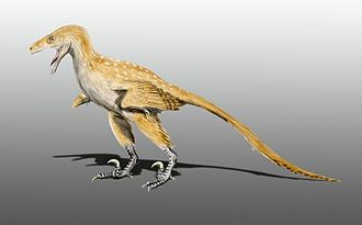 Two Medicine Formation - Bambiraptor