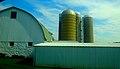 Barn and Three Silos - panoramio.jpg