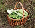 Basket with vegetables 2017 G1.jpg