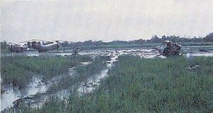 Battle of Ap Bac - Downed CH-21s and Huey in a rice paddy