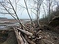 Beach Kama reservoir.Берег Камского водохранилища - panoramio (3).jpg