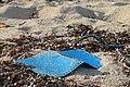Beach of bantayan 2017 garbage 5.jpg