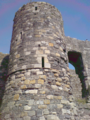Beaumaris Castle 06 977.PNG