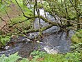 Becka Brook Crossing - geograph.org.uk - 935873.jpg