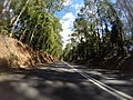 Benandarah NSW 2536, Australia - panoramio (22).jpg