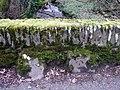 Bench mark on bridge - geograph.org.uk - 689071.jpg