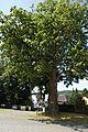 Berching Oberpfalz NM 047.JPG