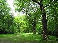 Berlin Tiergarten vista - IMG 8375.JPG